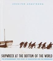 Shipwreck at the Bottom of the World