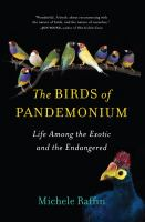 Birds of Pandemonium