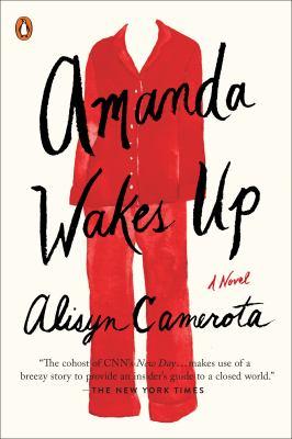 Amanda Wakes Up by Alysin Camerota