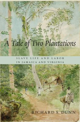 A tale of two plantations :
