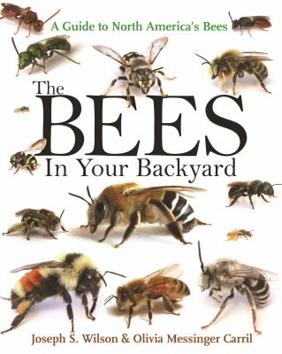 The bees in your backyard :