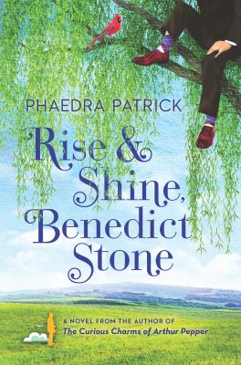 Rise and Shine Benedict Stone Book Cover