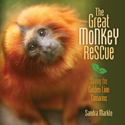 The great monkey rescue : saving the Golden lion tamarins
