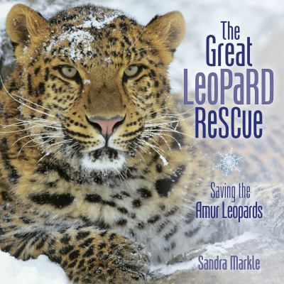 The great leopard rescue :