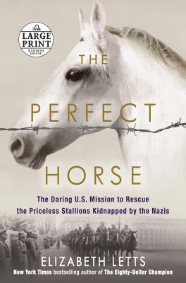 The perfect horse :