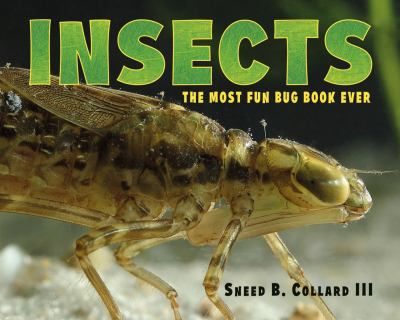 Insects :