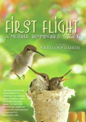 First flight :