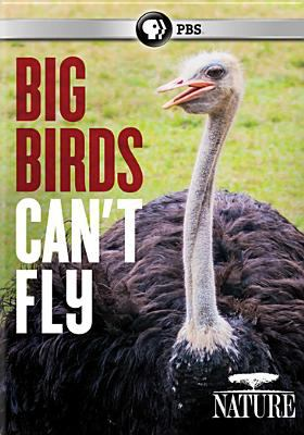 Big birds can't fly