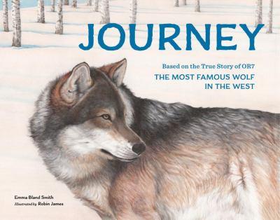 Journey :