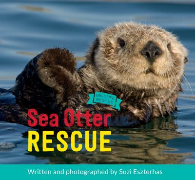 Sea otter rescue