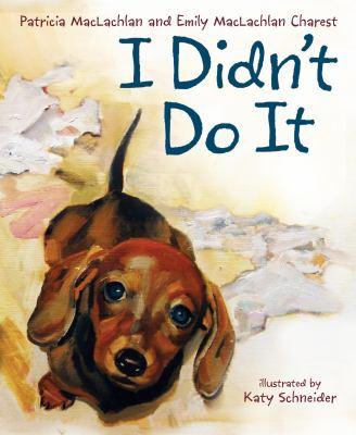 I didn't do it