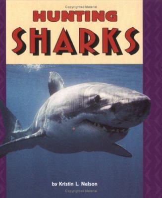 Hunting sharks