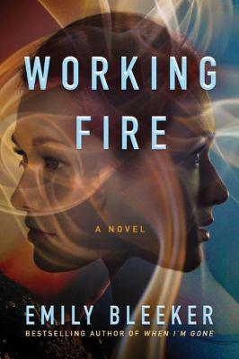 Working fire : a novel