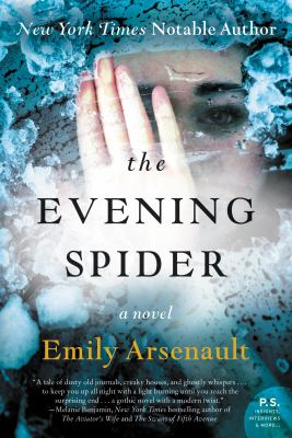 Cover Image for Evening Spider by Emily Arsenault