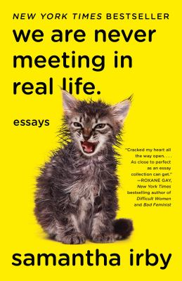 Cover Image for We are Never Meeting in Real Life by Irby