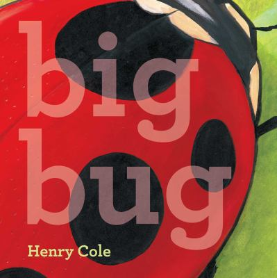 Big Bug(book-cover)