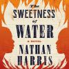 The sweetness of water : a novel