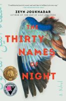The thirty names of night : a novel