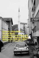 You and me : a project between Bosnia, Germany and the US, 2014 /