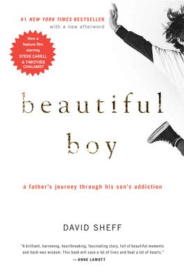 Cover image for Beautiful boy : a father's journey through his son's addiction
